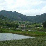 これぞ韓国の典型的な田舎!