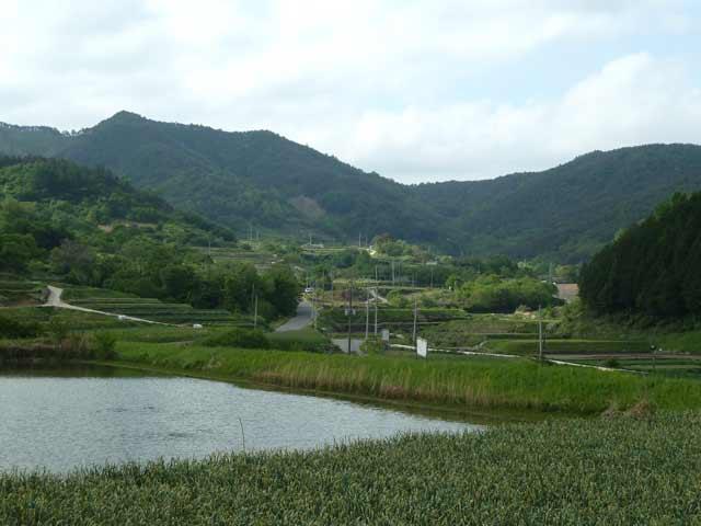 韓国 田舎