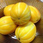チャメ(참외)日本では食べられない果物