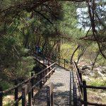 北漢山のトレッキングコースで得た教訓