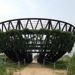 ハヌル公園でススキと景色を楽しむ!