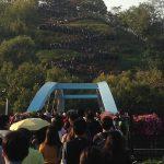 ハヌル公園のススキ祭りは幻想的!
