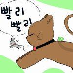 韓国語のパリパリの意味&パリパリ文化(精神)のあるあるパターン