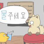 「水ください」を韓国語で!基本表現から応用編まで詳しく解説!