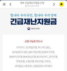 韓国のコロナ緊急災難支援金のシステムが意外にすごかった