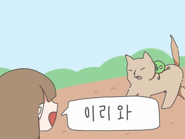 韓国語 イリワ