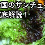 韓国のサンチュとは?美味しい巻き方&食べ方も解説!