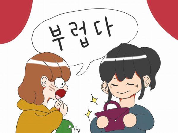 羨ましい 韓国語
