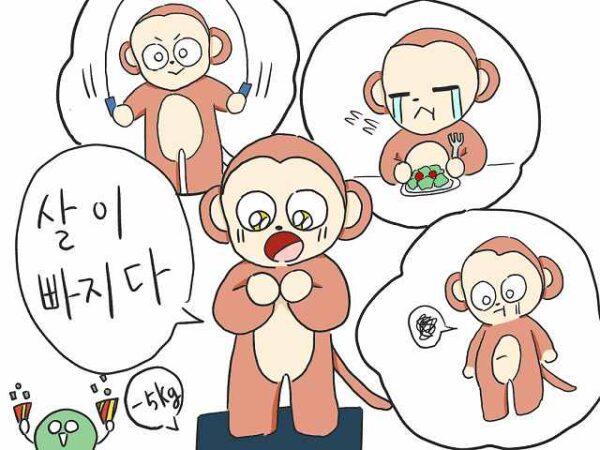 痩せる 韓国語